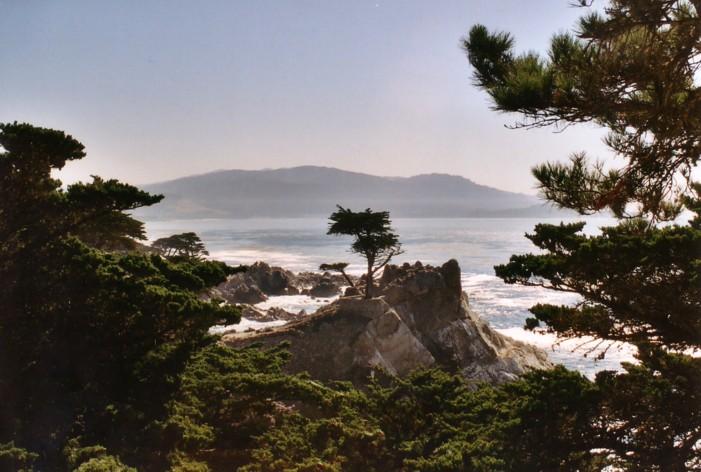 Lone Pine,Monterey